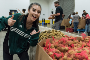 Volunteer at the Food Bank with Potatoes